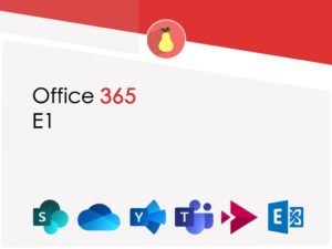 What Microsoft Office 365 E1 includes